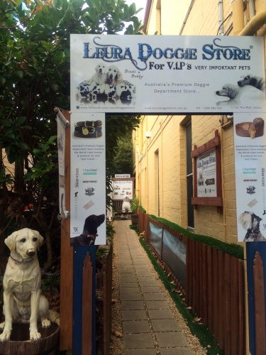 You'd love dog-friendly Leura!