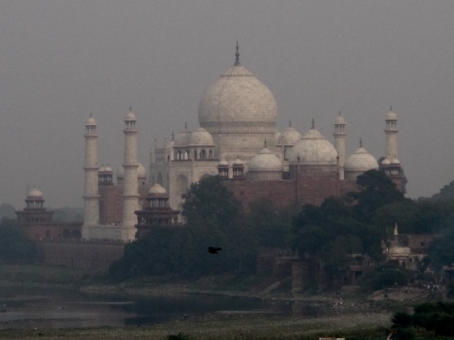 This is how the Taj Mahal looks when viewed from Agra Fort, just 2 kms away.