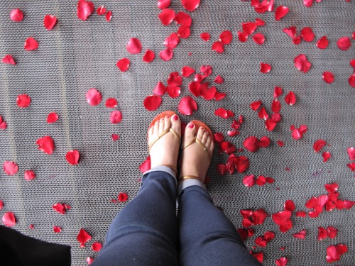 A shower of rose petals as we boarded Paradise Luxury.