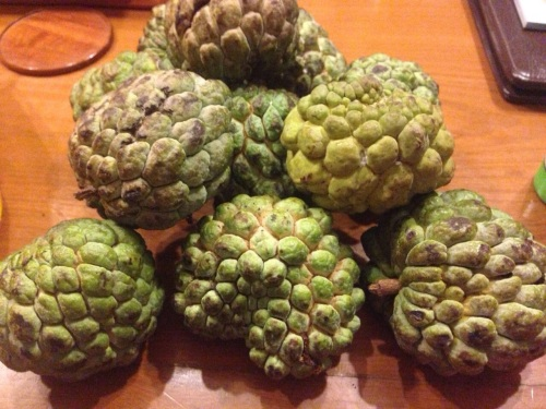 It's custard apple from Myanmar. Not as good as their Thai counterpart.